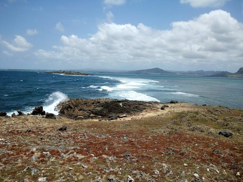 île au phare
